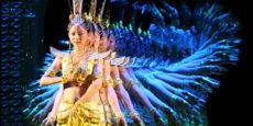 MY DREAM – St James Theatre, Sunday 28 November, 6.30pm