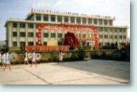 Shandan Bailie - New School
