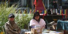 NZCFS at Hastings Blossom Parade Market September 2011