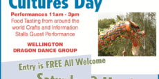 International Cultures Day, Cornwall Park, Hastings