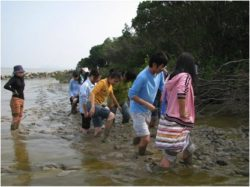 Team members of China Mangrove Protection Project, helping to protect the mangroves of SE China.  Photo: copyright of Whitley Fund for Nature