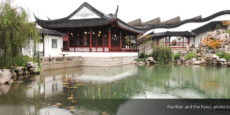 Celebrate NZ Chinese Language Week