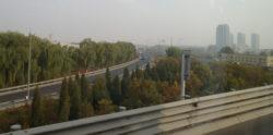Trees planted alongside motorways in Beijing