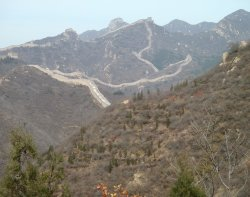Young trees planted near the Great Wall at Badaling