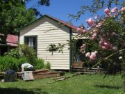 Rewi Alley Whare after maintenance, with Rose Blossom