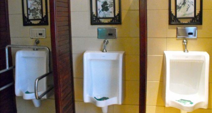 Dujiangyan Bridge Toilet